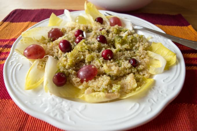 Warm Belgian Endive Winter Salad | mygutfeeling.eu