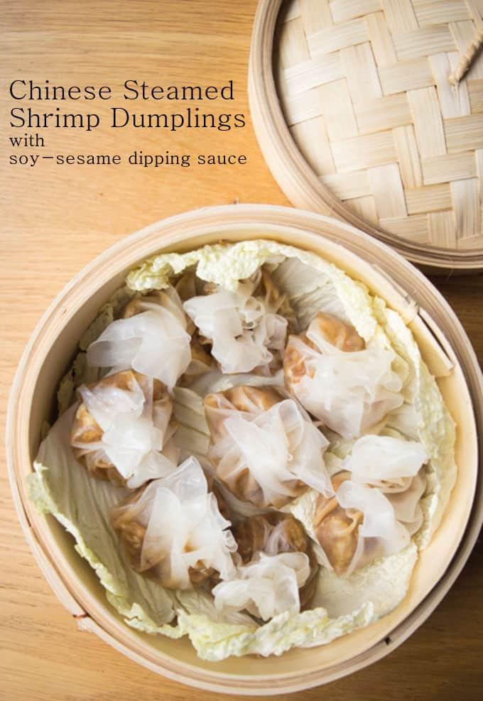 recipe for chinese chicken dumplings